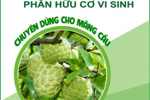 Giới thiệu về sản phẩm Phân bón hữu cơ vi sinh
