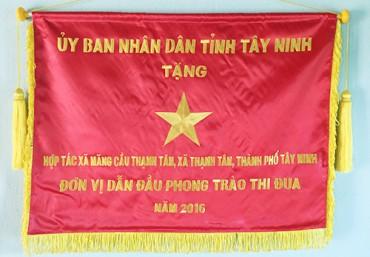 Những thành tựu HTX Mãng cầu Thạnh Tân đạt được
